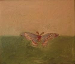 JaneZdansky_Moth