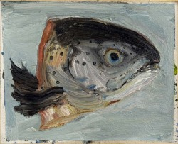 Fish Head 2