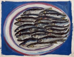 Sardines Lined Up