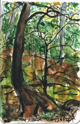 TreesSmallSketch1