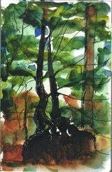 TreesSmallSketch2